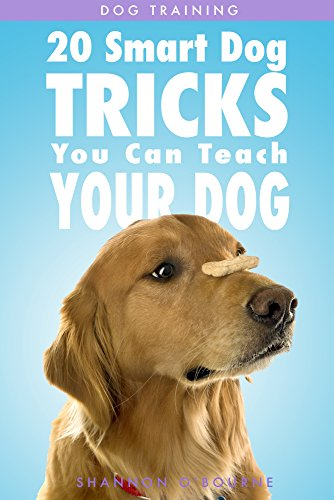 Dog Training: 20 Smart Dog Tricks You Can Teach Your Dog by [Shannon O'Bourne]