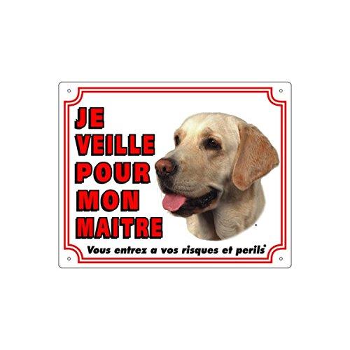 VADIGRAN FR Panneau en PVC pour Labrador Retriever Sable Blanc