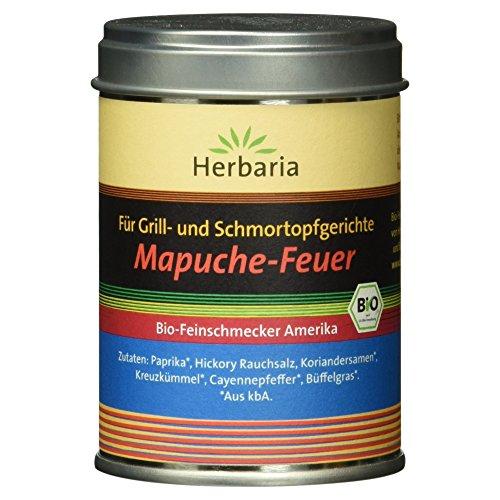 Herbaria für Grill und Schmortopfgerichte Mapuche-Feuer BBQ Gewürzmischung BIO 85g M-Dose