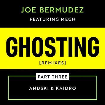 Ghosting: Remixes, Pt. 3 (feat. Megn)