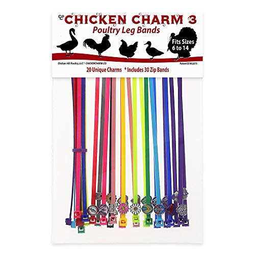 Chicken Charm #3 Poultry Leg Bands - Includes Americas Favorite Lady Super Hero's