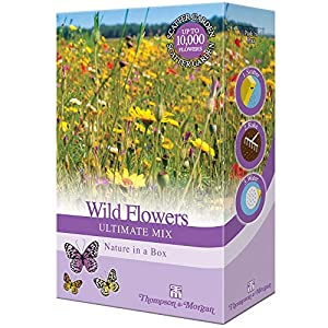 Seed Flower Garden Mixed Scatter Packs Wild Flowers Ultimate Mix Shake & Sow by Thompson and Morgan