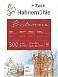 Hahnemühle Britannia - Cartulina para acuarela (mate, 300 g/m², 30 x 40 cm, 12 hojas)