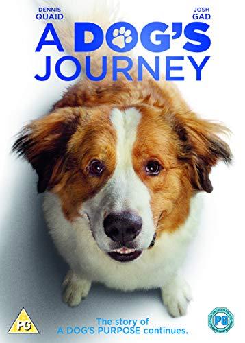 A Dog's Journey (DVD) [2019]