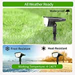 Frost and Heat Resistant Claoner 32 LED Solar Landscape Spotlights, Wireless Waterproof Solar Landscaping Spotlights Outdoor Solar Powered Wall Lights for Yard Garden Driveway Porch Walkway Pool Patio- Cold White(2 Pack)