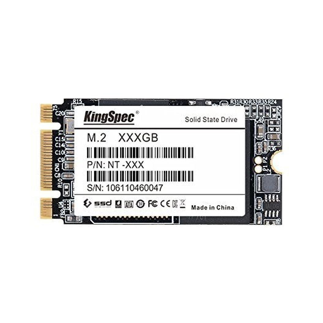 ステップ実施する調和のとれたKingSpec 256GB M.2 2242 (NGFF SATA) MLC Internal Solid State Drive for IBM/Thinkpad X240 X250 X250s Chromebook C720 [並行輸入品]