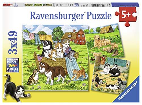 Ravensburger Kinderpuzzle - 08002 Süße Katzen und Hunde - Puzzle für Kinder ab 5 Jahren, mit 3x49 Teilen