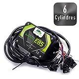 KIT Ethanol Flex Fuel - E85 - Bioethanol - 6 cylindres + Interface de Diagnostic ELM327 USB. Compatible avec Peugeot, Citroën, BMW, Renault, Audi, VW, … (Connecteurs Bosch EV1)