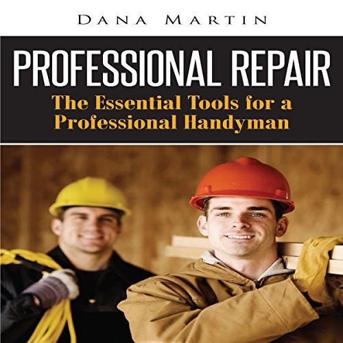 Professional Repair audiobook cover art