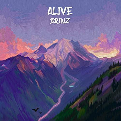 Brinz