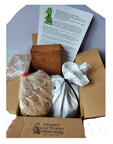 Wormcity TIGER COMPOSTING WORMERY STARTER SET, 500g WORMS + Worm Food + Coir Bedding Caring For Your Worms Leaflet