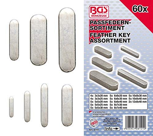 BGS 8141 | Passfedern-Sortiment | 60-tlg.