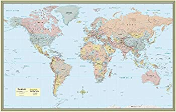 World Map Poster  32 x 50 inches  - Laminated  - a QuickStudy Reference