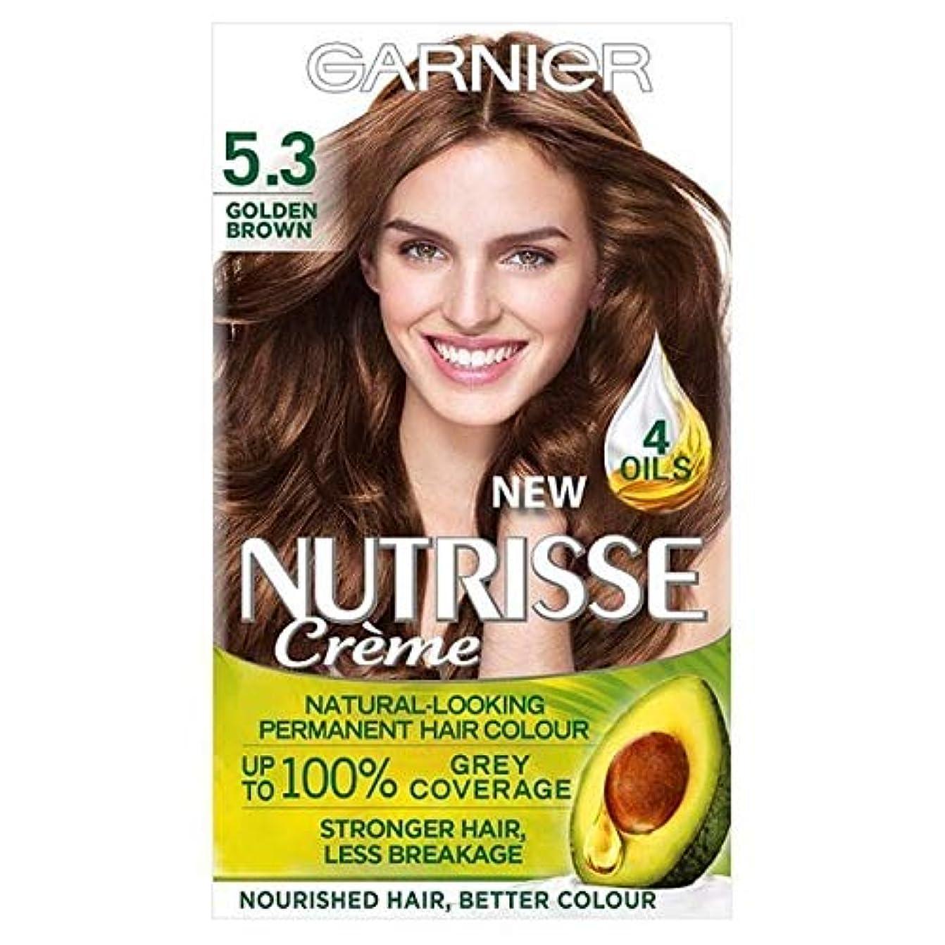 グリーンランド脚本家相対的[Garnier ] 5.3キツネ色ガルニエNutrisseパーマネントヘアダイ - Garnier Nutrisse Permanent Hair Dye Golden Brown 5.3 [並行輸入品]