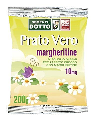 Sdd 40030080 Prato Margheritine, Verde, 12x20x2 cm