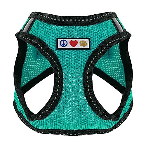 Pawtitas Pet Step-in Mesh Dog Harness