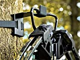 BWD Crossbow Hanger - ON Your Tree in Seconds - The ONLY Crossbow Hanger Legal to USE ON All State...