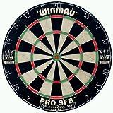 Steel Dartboard - Pro SFB