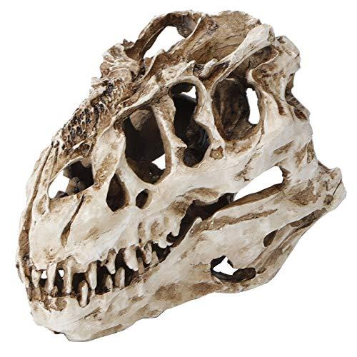 zhuolong Dinosaur Skull Ornaments, Resin Dinosaur Skull Personality Animal Skeleton Ornaments Props Halloween Collection Craft Decor