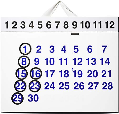 2019 D-BROS カレンダー 「365'19」KIGI 植原亮輔 デザイン Helvetica インテリア デザイン