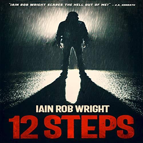12 Steps audiobook cover art