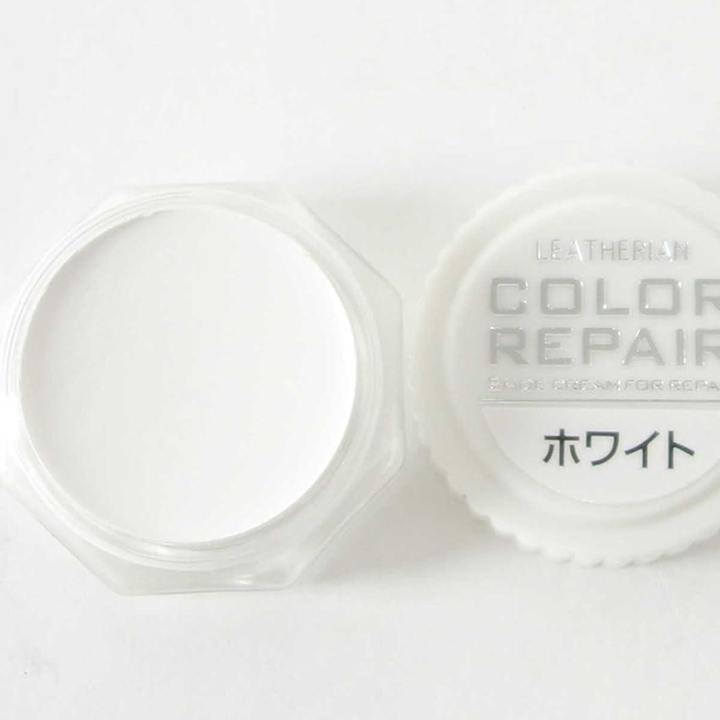 話終点財政[コロンブス] COLOR REPAIR カラーリペア(日本製)