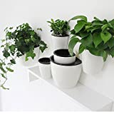 Sungmor Self Watering Wall Planter - Modern White & 3PC Pack & Large Size - Indoor Outdoor Vertical Flower Pot - Wall Mounted Window Hanging Pot - Water Storage Space Design Container