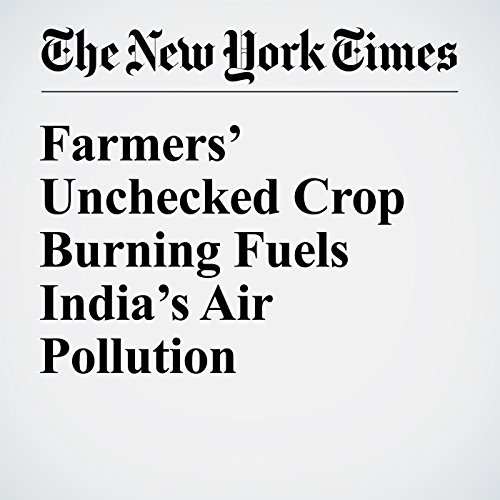 Farmers' Unchecked Crop Burning Fuels India's Air Pollution cover art