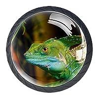 4 個のキャビネット ノブ 引き出しドレッサー ハンドル緑色の爬虫類トカゲ 部屋、キッチン、オフィス、バスルーム用