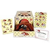 Basic Fun Pound Puppies Classic Stuffed Animal Plush Toy - Great Gift for Girls & Boys - 17' - Red with Black Spots
