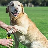Professioneller Krallenschneider Krallenzange für Hunde von Thunderpaws mit Schutzvorrichtung, Sicherheitsverschluss und Nagelfeile – Geeignet für mittelgroße und große Rassen - 7