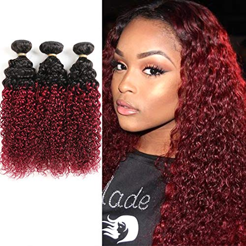 Feelgrace 2 Tone Ombre Kinky Curly Human Hair Weave 3 Bundles 1B/99J Ombre Virgin Hair Bundles Jerry Curl Black to Burgundy Ombre Color Hair Extensions 16 18 20 inch