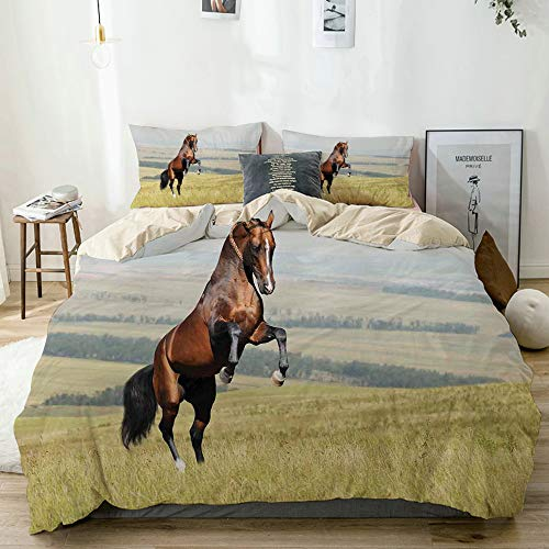 Parure de lit,Beige,Bay Akhal-Teke Horse Stallion Elevage sur Le Terrain Mammifère Noble à l'extérieur,1 Housse de Couette 220x240 + 2 Taies d'Oreillers