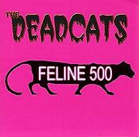 Feline 500