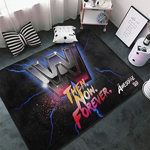 W-W-E Area Rugs Home Decor Non-Slip Floor Mat Living Room Bedroom Carpets Doormats 60 x 39 inche