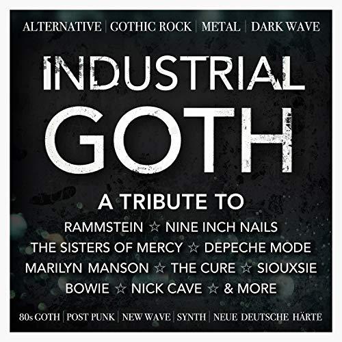 Industrial Goth : Alternative, Gothic Rock, Metal, Dark Wave, 80s Goth, Post Punk, New Wave, Synth, Neue Deutsche Harte