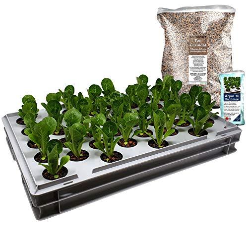 GREEN24 Aqua 36-B Pro Hydroponic Anzucht-System XL 40 x 60 cm Hydroponik Indoor Pflanzen-Aufzucht für Nutzpflanzen, Gemüse, Kräuter, Salate, Zierpflanzen in Tiefwasserkultur (Modell Aqua 36-B)