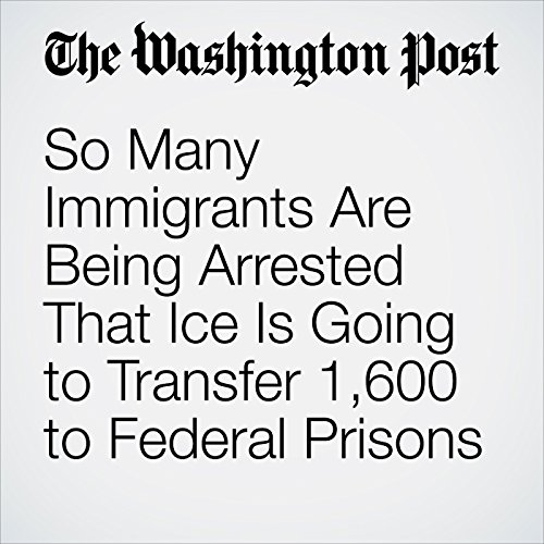 So Many Immigrants Are Being Arrested That Ice Is Going to Transfer 1,600 to Federal Prisons copertina