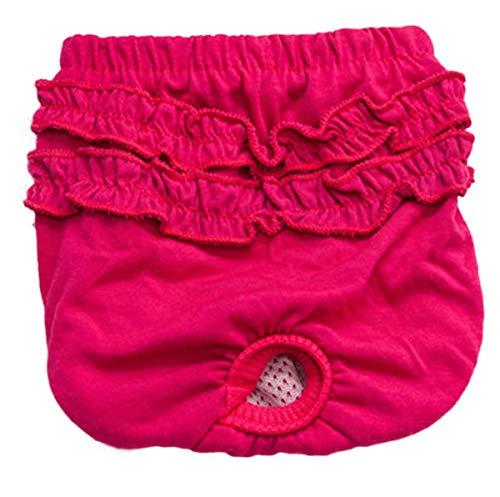 Smniao Hygieneunterhose für Hündinnen, Teddy Bulldogge Hundewindeln Inkontinenz Haustier Weibliche Windel Schutzhose Unterwäsche (M, Rot)