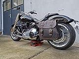 Orletanos Zeus Negro & Naranja Alforja Funda Lateral Bolso de Cuero Compatible con Harley Davidson Caja Lateral Bolsa de Equipaje Cuero HD