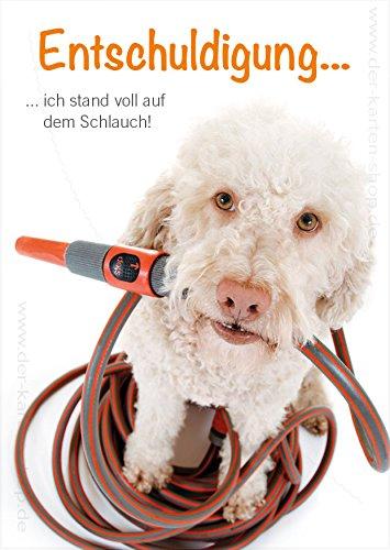 A6 Tierpostkarte, Postkarte, Entschuldigungskarte, Grußkarte Hund steht auf dem Schlauch im 3er Set