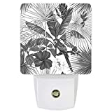Plug-in Night Lights Parrot Tropical Plants Flowers Grey LED Night Lamp with Auto Dusk-to-Dawn Sensor Warm White Light & Ultra Low Power for Bedroom/Bathroom/Hallway/Kid's Room