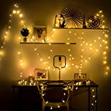 Hollosport 33ft 100 Tiny Globe Bulbs 110V Plug in LED Warm White Lights String for Party & Christmas & Bedroom, 8 Modes Switch Control