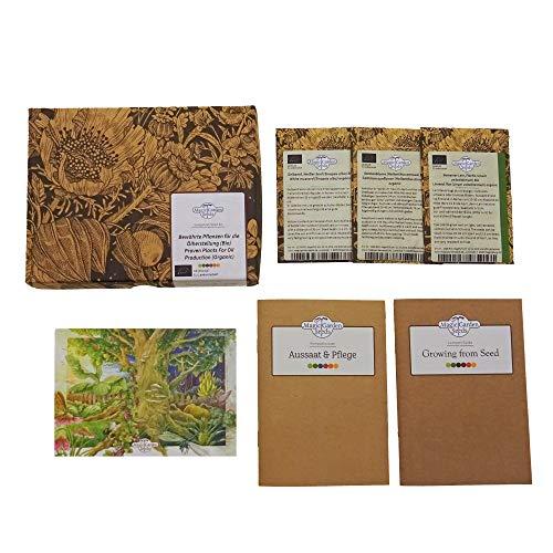 Bewährte Pflanzen für die Ölherstellung (Bio) - Samen-Geschenkset mit 3 traditionellen Sorten