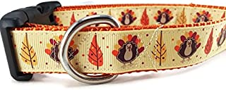 Thanksgiving Dog Collar, Caninedesign, Autumn, Fall, Turkey, 1 inch Wide, Adjustable, Nylon, Medium Large