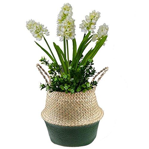housesweet 1pc Mini Plantes Succulentes Artificielles Plantes D/écoratives De Cactus Plantes Faux En Pot Al/éatoire