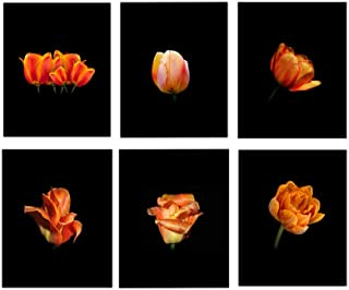 Tulip Wall Art, 8