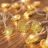 CozyHome - Guirnalda de luz en forma de corazón – 5 m de corriente | 20 corazones de luz blanca cálida oro | LED bajo consumo | decoración para la casa | con enchufe