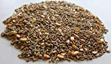 4 Pound Non GMO Whole Sprouting Grains Seed Mix Chicken Feed Poultry Scratch Grain Ration Barley Fodder Sprouts Soy Free Corn Seeds Oats Wheat Forage Peas