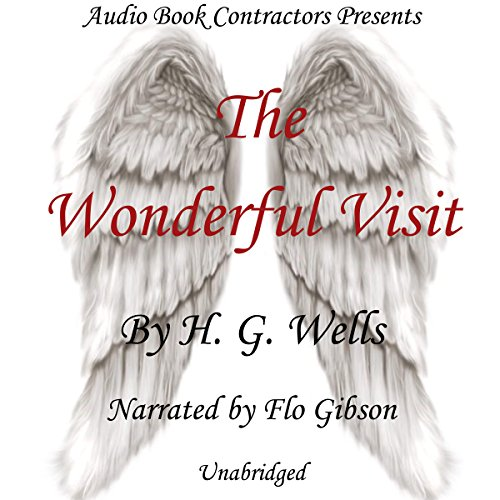 The Wonderful Visit audiobook cover art